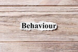 Behaviour Consultancy